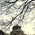 Sight of Osaka Castle